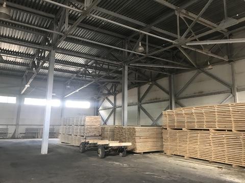 Сдается производственно-складское помещение площадью 970 кв. м. - Фото 5