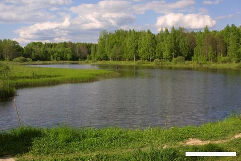 Продажа земельного участка в ДНП Ковчег - Фото 5
