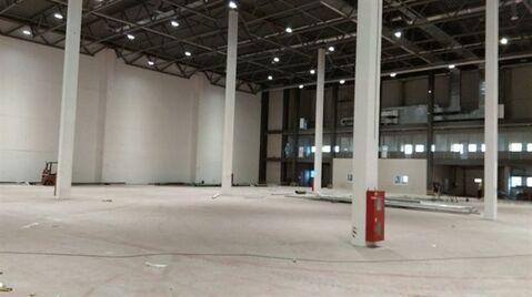 Сдам складское помещение 6000 кв.м, м. Купчино - Фото 2