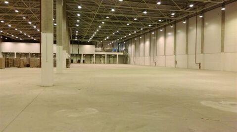 Сдам складское помещение 2000 кв.м, м. Проспект Ветеранов - Фото 3