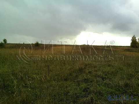 Продажа участка, Селище, Псковский район - Фото 2
