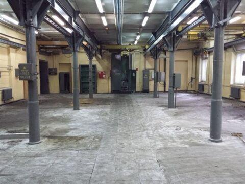 Сдам производственное помещение 400 кв.м, м. Площадь Ленина - Фото 1