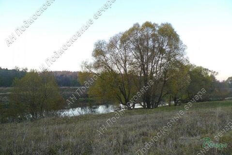 Киевское ш. 90 км от МКАД, Кривское, Участок 15 сот. - Фото 3