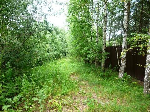 Участок в д. Головино, рядом р. Волга, лес. Кимрский район - Фото 5