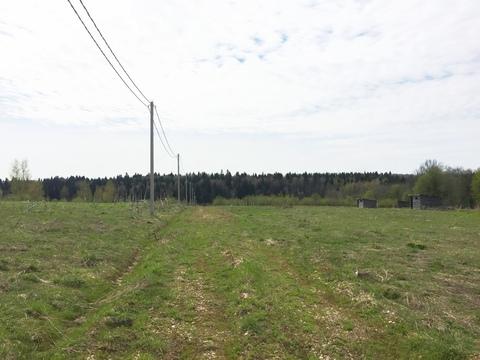 Участок 40 соток село Костино, 60 км. от МКАД по Дмитровскому шоссе. - Фото 5