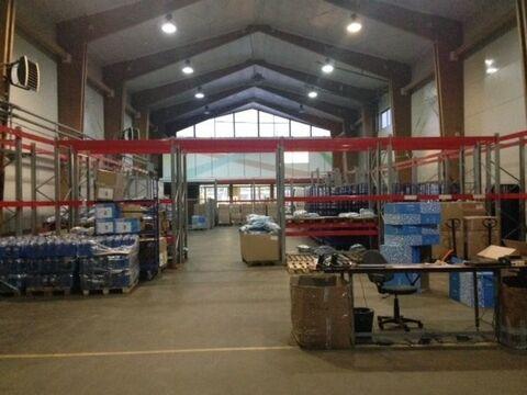 Сдам складское помещение 930 кв.м, м. Елизаровская - Фото 4