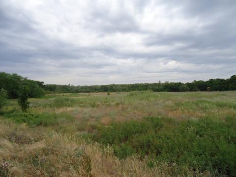 Земельный участок на берегу р. Ахтуба - Фото 5