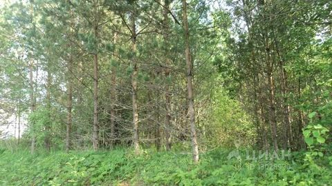 Продажа участка, Псков, Ул. Линейная - Фото 1