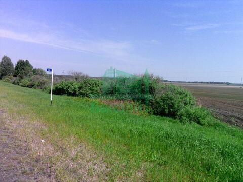 Продажа участка, Тюмень, Велижанский тракт 36 км. - Фото 4