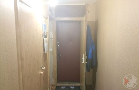 1-к квартира, 31.4 м, 1/5 эт. - Фото 4
