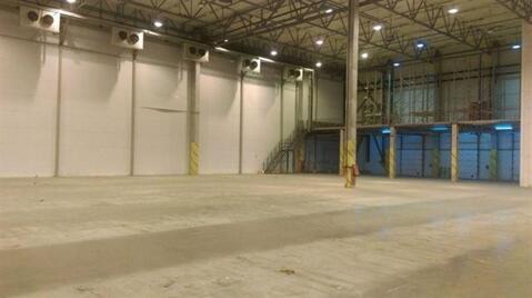 Сдам складское помещение 3770 кв.м, м. Купчино - Фото 4