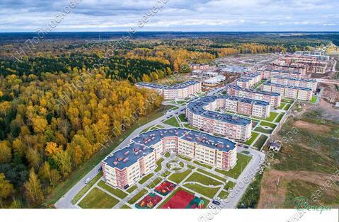 Московская область, городской округ Истра, деревня Высоково, . - Фото 1