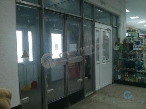 Аренда торгового помещения 500-1000 кв.м, пр-кт Ленина - Фото 2