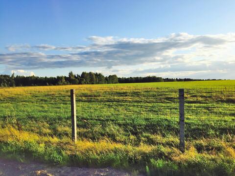 Земельный участок 22 сотки в кп Истомино. Лес, газ, электр-ство, вода. - Фото 4
