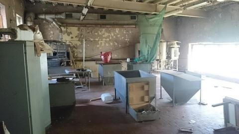 Производственное помещение 243 кв.м. на территории завода - Фото 3