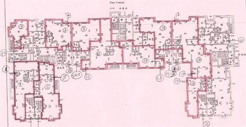 Сдам торговое помещение 300 кв.м, м. Площадь Ленина - Фото 3