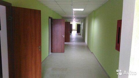Офисное помещение, 36.8 м - Фото 2