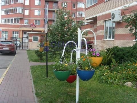 Продается квартира Пушкино, Островского ул. - Фото 2