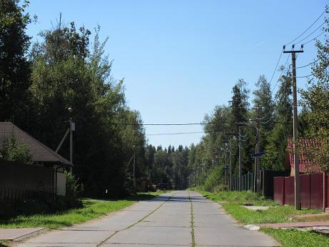 Лесной участок, Минское ш, возле Голицыно, Зеленая роща, охрана - Фото 1
