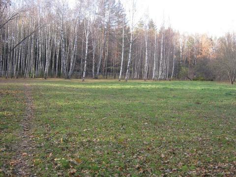 Земельный участок 40 соток в поселке Победа Мытищинского района - Фото 3