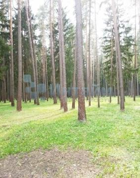Аренда дома, Шишкин Лес, Михайлово-Ярцевское с. п. - Фото 4