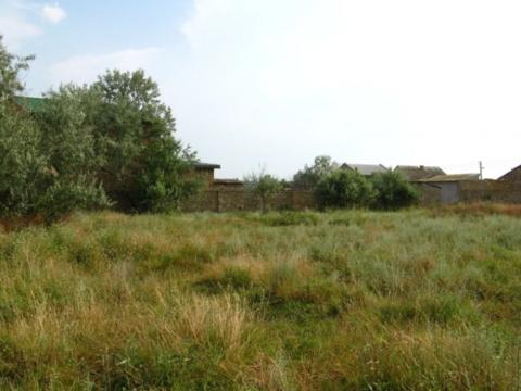 Продажа участка, Орловка, Красногвардейский район, Улица Колосистая - Фото 5