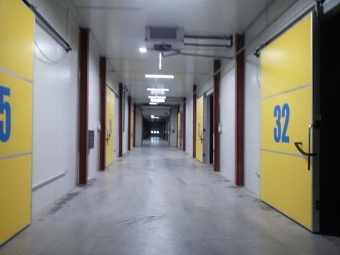 Температурный склад в Томилино - Фото 1