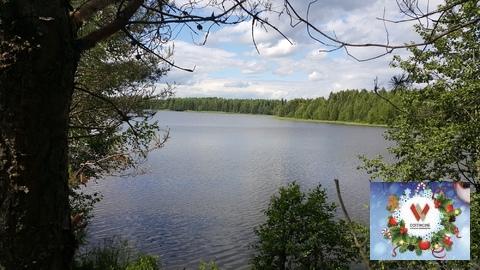 Продам 11 соток ИЖС, красивейшее озеро и лес - Фото 2