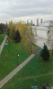 Г Московский 14.5 кв. м - Фото 1