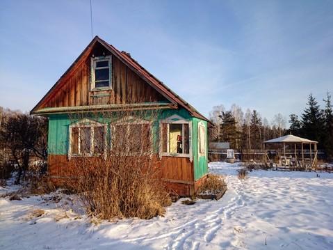 Продается земельный участок в коллективном саду Дружба - Фото 3