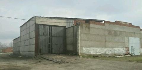 База 30 сот, строения 500 м2 - Фото 3