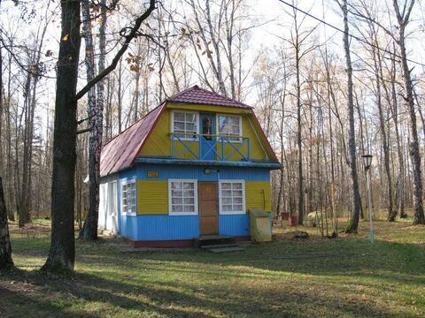 Продается база отдыха Горняк в Тульской области, Алексинский р-н - Фото 4
