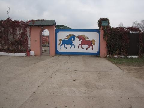 Продается конюшня - Фото 1