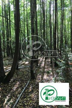 На границе с новой Москвой предлагаем для покупки большой земельный уч - Фото 2