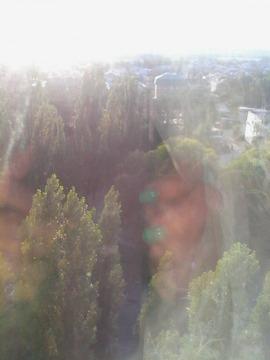 Продажа комнаты, Воронеж, Ул. Южно-Моравская - Фото 4
