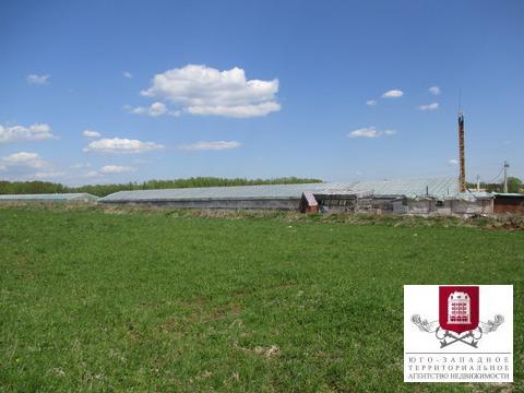 Аренда участка 140 соток, сельхозназначение (СНТ, ДНП) - Фото 5
