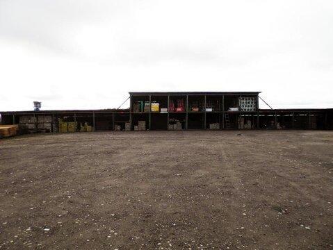 Яковлево село участок 2,2 гектар Тульская область Заокский район - Фото 5