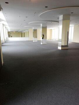 Аренда торгового помещения 440м2, 1эт, 1линия на Аптекарской наб,1 - Фото 2