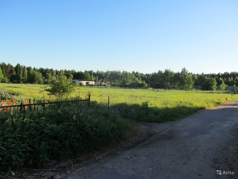 Зеленогорск, Поляны + 5 км, Горьковское - Фото 1