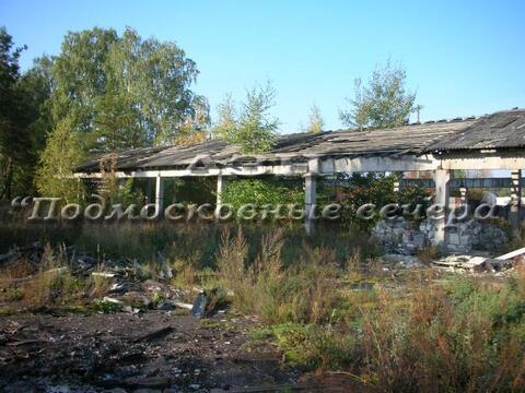 Горьковское ш. 110 км от МКАД, Вольгинский, Участок 107 сот. - Фото 3