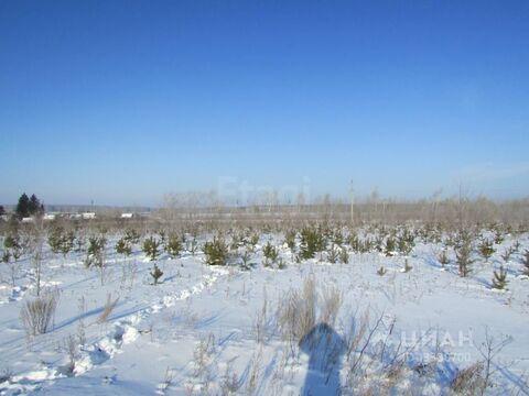 Участок в Курганская область, Шадринск Газовик кп, (1181.0 сот.) - Фото 2