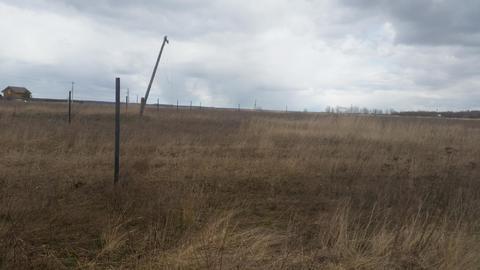 Продам земельный участок 50 соток (ИЖС), д.Плюсково - Фото 2