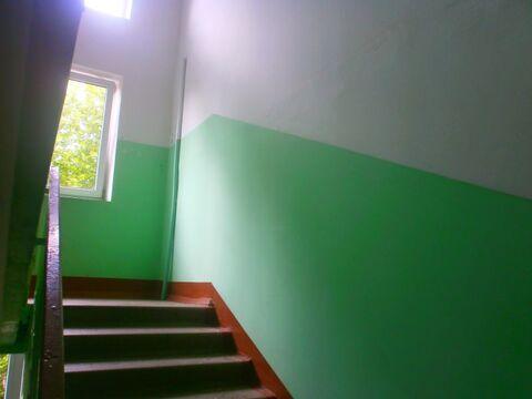 1-комнатная квартира 31 кв.м. 5/5 пан на Короленко, д.57 - Фото 5
