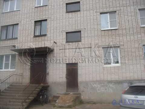 Продажа квартиры, Ивангород, Кингисеппский район, Кингисеппское ш. - Фото 1
