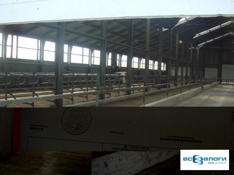 Продажа производственного помещения, Бондарский район, СПК - Фото 3
