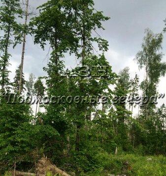 Минское ш. 25 км от МКАД, Сивково, Участок 10 сот. - Фото 1