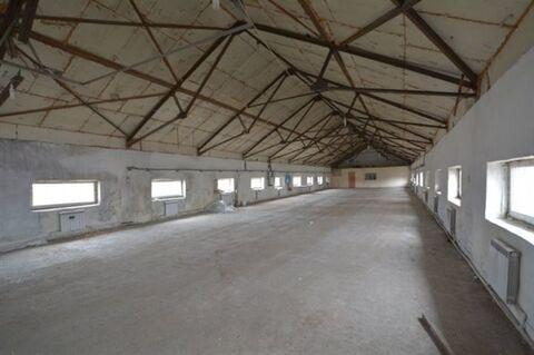 Сдам складское помещение 390 кв.м, м. Купчино - Фото 3