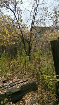 Участок 7 соток в г.Фрязино Щелковского района 20 км от МКАД - Фото 2