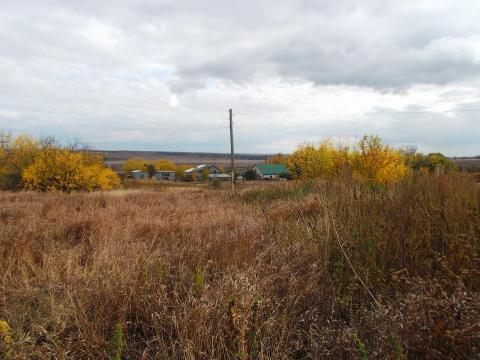 Участок в Задонском районе - Фото 3