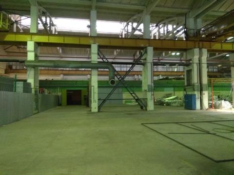 Производственно-складской комплекс с кран-балкой. - Фото 2